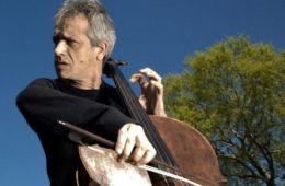 cellofestival